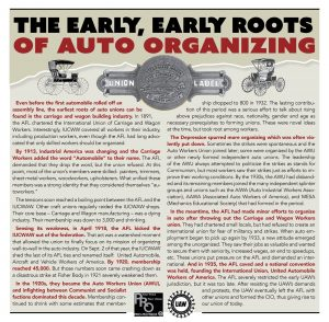 early_auto_organizing_roots